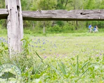 Landscape Photography | Greenbelt Cycling | Digital Download
