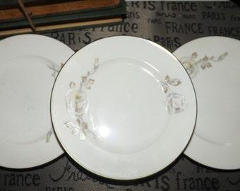 Vintage (c.1960s) Johann Haviland Germany Sweetheart Rose pattern bread-and-butter or tea plate.