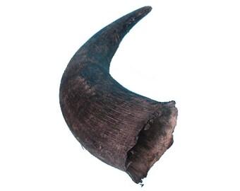 North American Buffalo Horn Cap (576-AS)