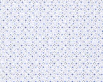 Coupon canvas 88x160cm blue dots