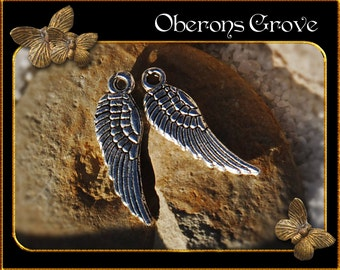 20 wing charms silver 5x17mm