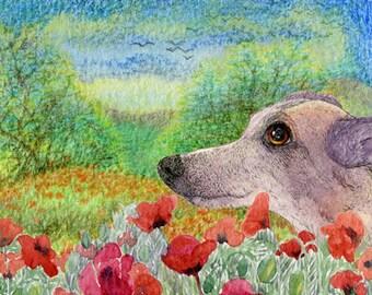 Whippet greyhound dog 8x10 print - Thinking of you