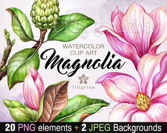 MAGNOLIA watercolor Clip Art. Blooming pink flowers, green leaves, nature decor elements, tree. Wedding pattern background. Read about usage