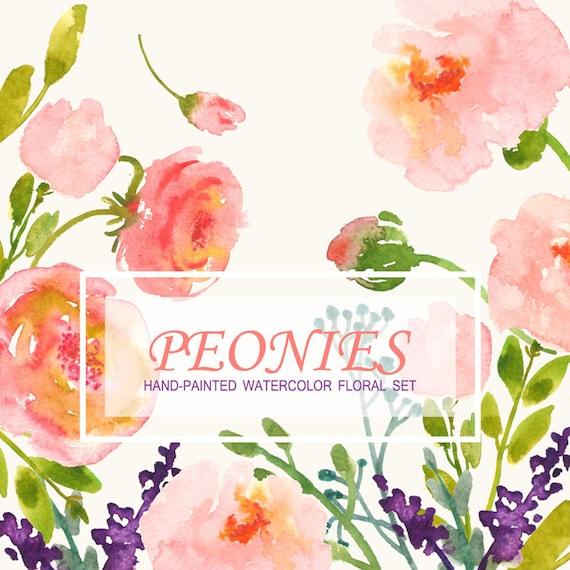 Watercolour Floral Clipart. Handmade, watercolour clipart, wedding diy elements, flowers - Peonies
