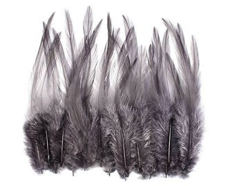 Rooster Feathers Grey 10316
