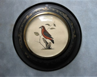 Small Tin Framed Bird Print, Gold Floral on Black Tin, Red Breasted Bird