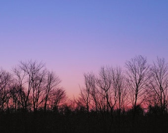 PINK DAWN--Sunrise, Nature Photography, Morning Sky, Pink Sky, Early Morning Sun, Tree Silhouette, Pink Landscape, Picture of Sunrise, Dawn
