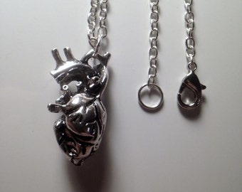 Anatomical Heart Necklace + Length variable + silver / gold plated