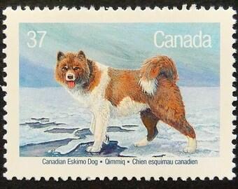 Canadian Eskimo Dog -Handmade Framed Postage Stamp Art 14854