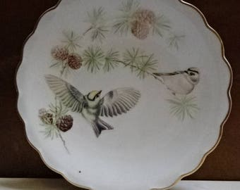 Royal Worcester Decorative Collectors Plate/The Birds by Dorothy Doughty Ltd Edition Dessert Plate/Goldcrests on a Larch/Collectable/Vintage
