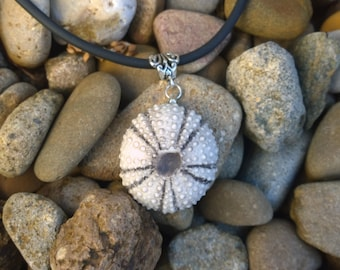 SUNG1 Small sea urchin necklace highlighted in grey under glaze.