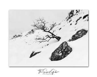 Entropy - Limited Edition A4 Photographic Print