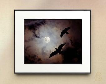 Raven art print - Raven Photography - Black Bird art - Full Moon photography - Night Sky art print - spooky art print - raven wall art