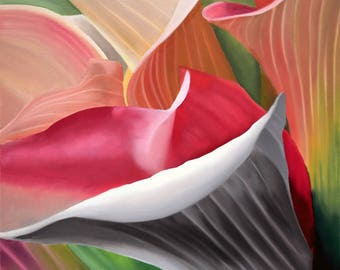 Colorful Calla Lily Flower Prints
