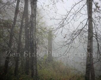 Fog Photo Print. Forest Photography Print. Nature Photography. Forest Landscape. Photo Print, Framed Photography, Canvas Photo. Home Decor.
