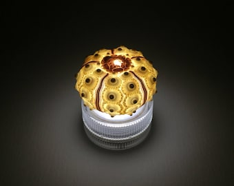 LED mini lamp / sputnik sea urchin