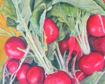 Vegetable Art, Vegetable Print, Vegetable Painting, Radish Print, Kitchen Decor, Kitchen Art, Kitchen Print, Vegetable Watercolor Rosenzweig