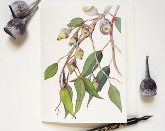 "Eucalyptus greeting card with envelope - 5.5""x7.5"" blank card for any occasion - watercolour print - Australian flora - Australian seller"