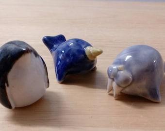 Tiny sea creatures