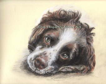 Commission an original, handpainted pastel portrait of your pet from your own photographs