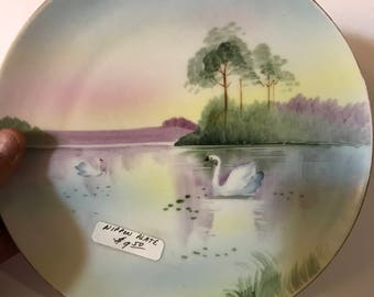 Hand Painted Nippon Plate