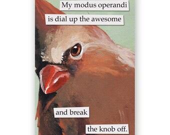 Modus Operandi Magnet - Bird - Cardinal - Humor - Gift - Stocking Stuffer - Mincing Mockingbird