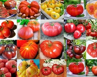 30+ GIANT Tomato Seeds, Organically Grown, 22 Varieties, Heirloom Non Gmo Tomatoes, Tomato LOT