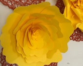 Giant Yellow Paper flower...