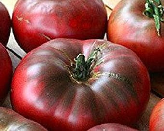 SALE Cherokee Purple Tomato Beefsteak Organic 15 seeds #1156