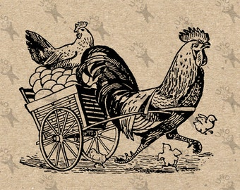 Image Hen Fresh Eggs Rooster Chicken Instant Download picture Digital printable vintage clipart graphic Totes Towels Transfer Iron On 300dpi