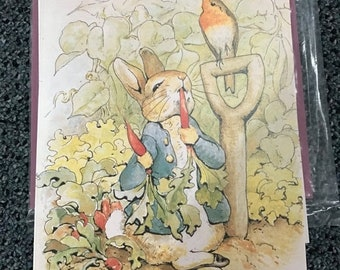 MAYniaSALE Beatrix Potter Peter in the Garden 3D Decoupage kit