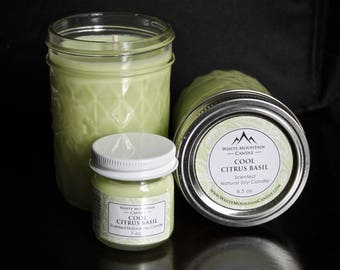 Cool Citrus Basil Scented 3 oz. Soy Candle