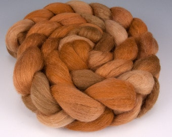 Polwarth Silk Top,Handpainted, 4 oz., Vixen