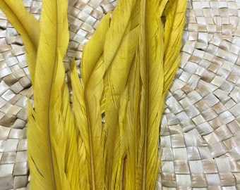 Extra long Coque feathers in yellow- length  13-16 inches-long yellow feathers, millinery, Tahitian costume, hula supply, Polynesian dance