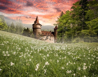 Castle in Forest, premade Backdrop, Photo edit, Princess Backdrop, Castle Backdrop, Photo Manipulation, Story Telling, Fairy Tale Castle