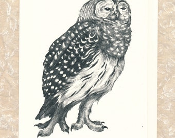 """Barred Owl Card 5"""" x 7"""" with Envelope"""