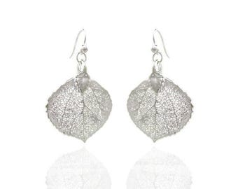 Natural Aspen Leaf Earrings Electroplated with Sterling Silver/Genuine Silver Aspen Leaf Earrings/Nature Jewelry/Botanical Jewelry/Real Leaf