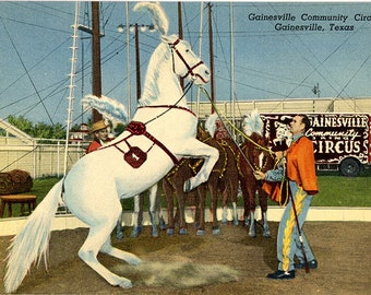 Gainesville Texas Community 3-Ring Circus Vintage Postcard (unused)