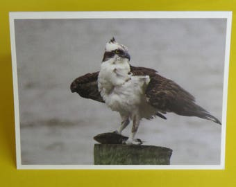 Egret Nature Photography Card