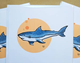 Gift Cards 3 PER PACK Cute Little Shark