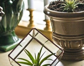 Unique Rustic Stained Glass Crystal Garden / Terrarium / Planter / Display Case - Cube