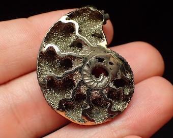 Pyrite Ammonite from Russia - 5.1gm / 32mm x 24mm x 6.8mm (B2347)