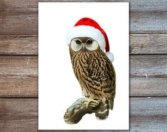 Christmas Decor, christmas owl