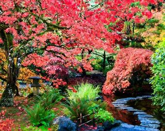 "Japanese Garden Photo Print  ""Restful Places"" 8x10 (and larger) Fine Art Photo Print, Landscape Photograph"