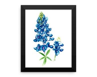 Texas Bluebonnet Framed Poster