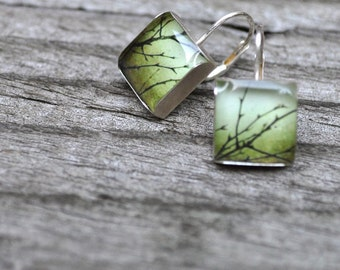 OLIVE. Lever-back dangle earrings. (Sterling Silver)