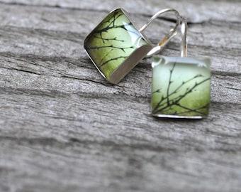 OLIVE. Lever-back dangle earrings. (Sterling Silver)