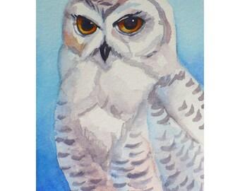 Snowy Owl Painting Original Watercolor Bird Wall Art by Janet Zeh 5x3.5 inches Original Art