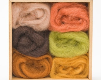 Earth Wool Roving Colors Set for Felting - Corriedale