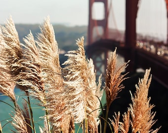 Golden Gate Bridge photograph - San Francisco - 8x10 photograph - California fine art print - nature photography - gifts under 30